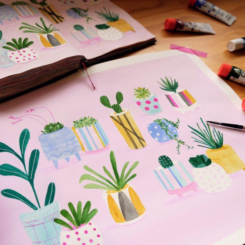 Interior Goals Indoor plants