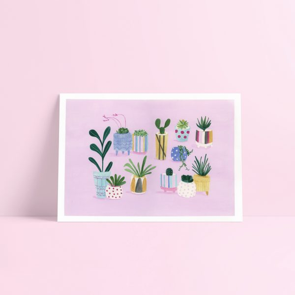 Indoor Plant Illustration