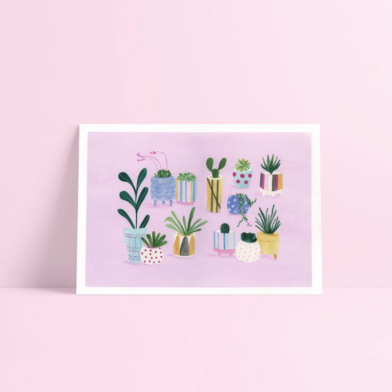 Indoor Plant Illustration